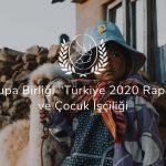 """Avrupa Birliği """"Türkiye 2020 Raporu"""" ve Çocuk İşçiliği"""